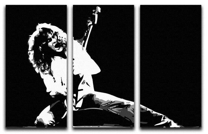 Van Halen 3 Split Panel Canvas Print