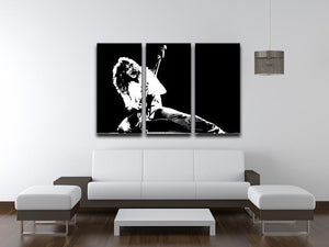 Van Halen 3 Split Panel Canvas Print - Canvas Art Rocks - 3
