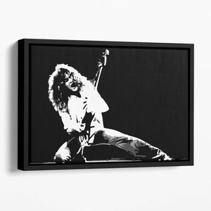Van Halen Floating Framed Canvas