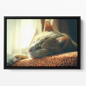 Very Sad Red Cat Floating Framed Canvas - Canvas Art Rocks - 2