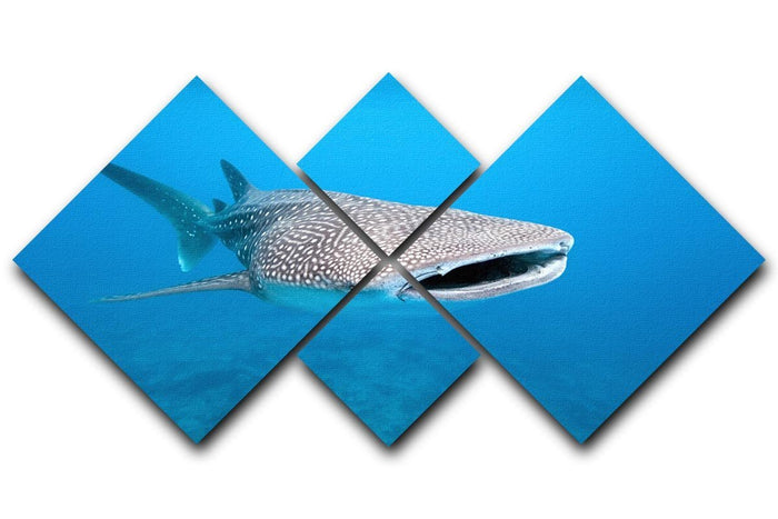 Whale shark 4 Square Multi Panel Canvas
