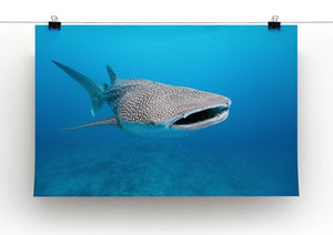 Whale shark Canvas Print or Poster - Canvas Art Rocks - 2