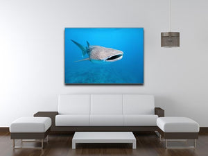 Whale shark Canvas Print or Poster - Canvas Art Rocks - 4