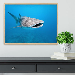 Whale shark Framed Print - Canvas Art Rocks - 4