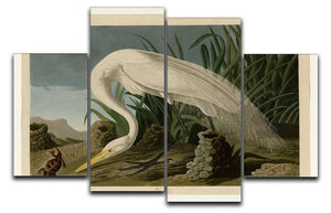 White Heron by Audubon 4 Split Panel Canvas - Canvas Art Rocks - 1