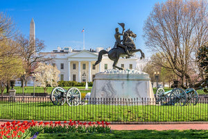 White House and Lafayette Square Wall Mural Wallpaper - Canvas Art Rocks - 1