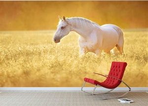White Orlov trotter horse in rye Wall Mural Wallpaper - Canvas Art Rocks - 2