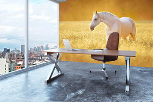 White Orlov trotter horse in rye Wall Mural Wallpaper - Canvas Art Rocks - 3