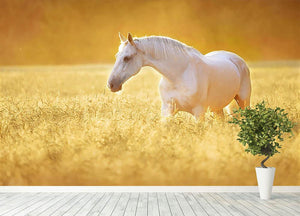 White Orlov trotter horse in rye Wall Mural Wallpaper - Canvas Art Rocks - 4
