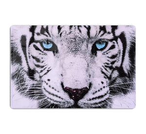 White Tiger Face HD Metal Print - Canvas Art Rocks - 1
