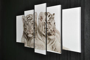 White Tiger cubs 5 Split Panel Canvas - Canvas Art Rocks - 2