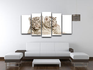 White Tiger cubs 5 Split Panel Canvas - Canvas Art Rocks - 3