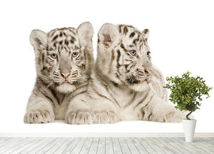 White Tiger cubs Wall Mural Wallpaper - Canvas Art Rocks - 4
