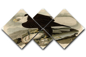 White headed Eagle by Audubon 4 Square Multi Panel Canvas - Canvas Art Rocks - 1