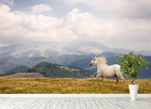 White horse Wall Mural Wallpaper - Canvas Art Rocks - 4