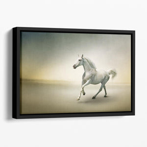 White horse in motion Floating Framed Canvas - Canvas Art Rocks - 1