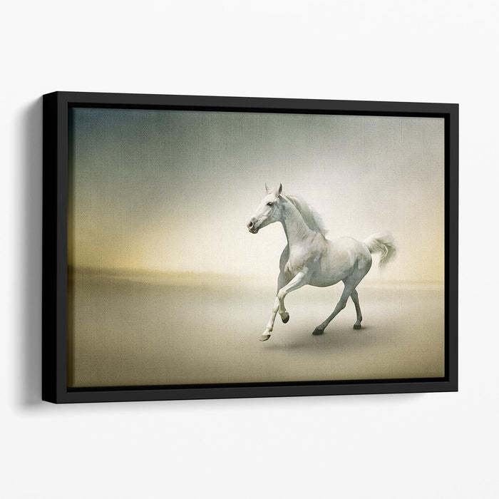 White horse in motion Floating Framed Canvas