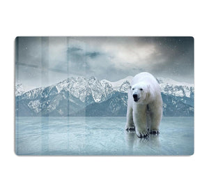 White polar bear on the ice HD Metal Print - Canvas Art Rocks - 1