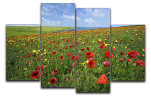 Wild Flower Meadow 4 Split Panel Canvas - Canvas Art Rocks - 1