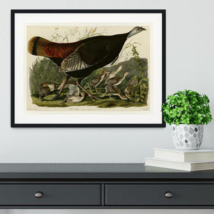 Wild Turkey 2 by Audubon Framed Print - Canvas Art Rocks - 1