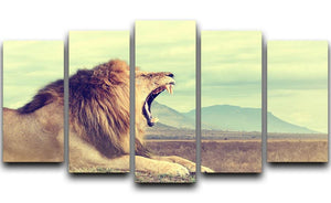 Wild african lion 5 Split Panel Canvas - Canvas Art Rocks - 1