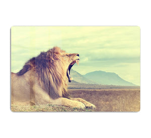 Wild african lion HD Metal Print - Canvas Art Rocks - 1