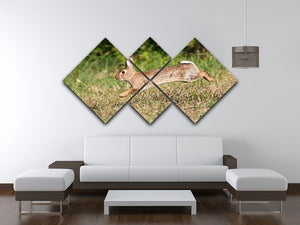 Wild cute rabbit is jumping on meadow 4 Square Multi Panel Canvas - Canvas Art Rocks - 3