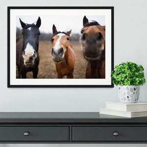 Wild horses on the meadow at spring time Framed Print - Canvas Art Rocks - 1