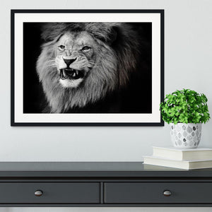Wild lion portrait in black and white. Framed Print - Canvas Art Rocks - 1