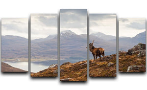 Wild stag overlooking Loch Torridon 5 Split Panel Canvas - Canvas Art Rocks - 1