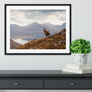 Wild stag overlooking Loch Torridon Framed Print - Canvas Art Rocks - 1