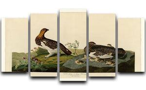 Willow Grouse by Audubon 5 Split Panel Canvas - Canvas Art Rocks - 1