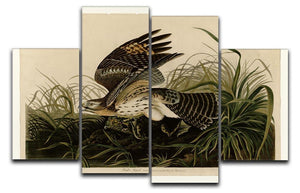 Winter Hawk by Audubon 4 Split Panel Canvas - Canvas Art Rocks - 1