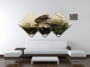 Winter Hawk by Audubon 4 Square Multi Panel Canvas - Canvas Art Rocks - 3