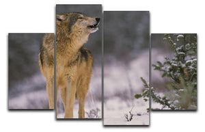 Wolf Howling in Snow 4 Split Panel Canvas - Canvas Art Rocks - 1