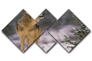 Wolf Howling in Snow 4 Square Multi Panel Canvas - Canvas Art Rocks - 1