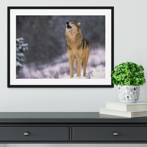 Wolf Howling in White Snow Framed Print - Canvas Art Rocks - 1