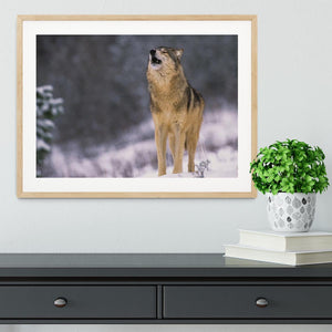 Wolf Howling in White Snow Framed Print - Canvas Art Rocks - 3