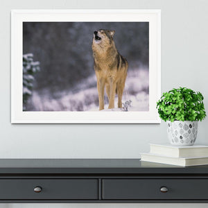 Wolf Howling in White Snow Framed Print - Canvas Art Rocks - 5
