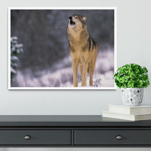 Wolf Howling in White Snow Framed Print - Canvas Art Rocks -6
