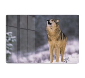 Wolf Howling in White Snow HD Metal Print - Canvas Art Rocks - 1