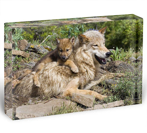 Wolf cubs and mother at den site Acrylic Block - Canvas Art Rocks - 1
