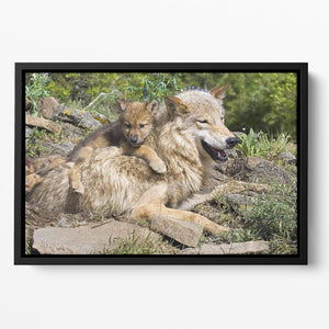 Wolf cubs and mother at den site Floating Framed Canvas - Canvas Art Rocks - 2