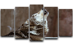 Wolves howl in Moscow Zoo 5 Split Panel Canvas - Canvas Art Rocks - 1