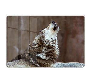 Wolves howl in Moscow Zoo HD Metal Print - Canvas Art Rocks - 1