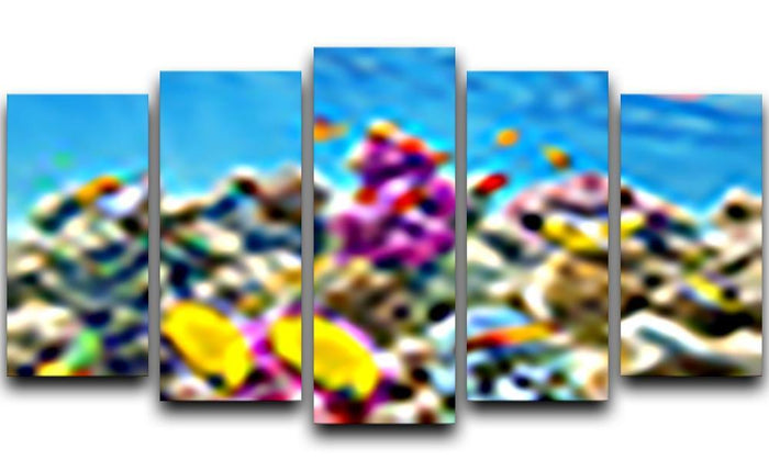 Wonderful and beautiful underwater 5 Split Panel Canvas