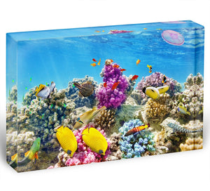 Wonderful and beautiful underwater Acrylic Block - Canvas Art Rocks - 1