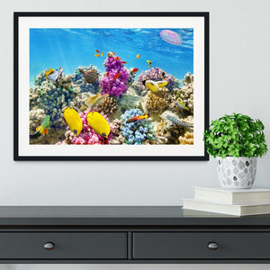 Wonderful and beautiful underwater Framed Print - Canvas Art Rocks - 1