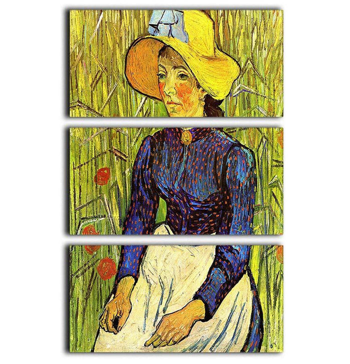 Young Peasant Woman with Straw Hat Sitting in the Wheat by Van Gogh 3 Split Panel Canvas Print