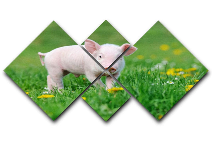 Young funny pig 4 Square Multi Panel Canvas
